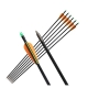 Fiberglass Archery Arrow Fixed Point Compound / Recurve Bow Anak Panah
