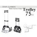 75KG Heavy Duty 6 Wheel Foldable Climb Stairs Hand Trolley