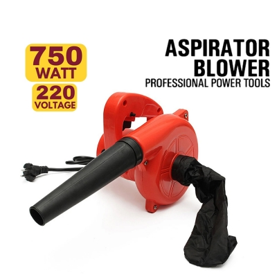 Portable 2 in 1 Professional Handheld Electric Air Blower 750W 220V