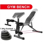 Gym Fitness Sit Up Bicep Leg Curl Table Chair (+7.5kg Dumbbell)